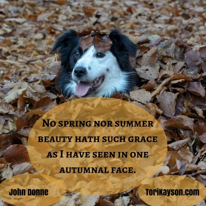 Bury Yourself in Autumn Joy
